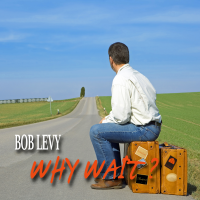 Album Why Wait? by Bob Levy