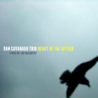 Dan Cavanagh Trio: The Heart of the Geyser