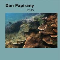 "Dan Papirany Release A New Album Titled ""2015"""