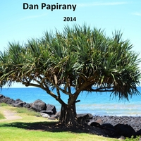 Album 2014 by Dan Papirany