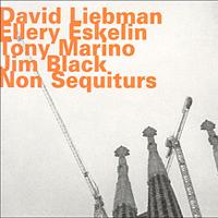 David Liebman & Ellery Eskelin: Non Sequiturs