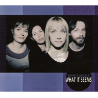 "Read ""What It Seems"" reviewed by Hrayr Attarian"