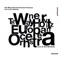 Album Live at the Bimhuis by Wayne Horvitz