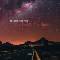 Album In The End Of The Night by Oddgeir Berg