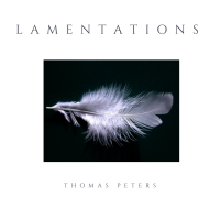 "Read ""Lamentations"" reviewed by Robin B James"