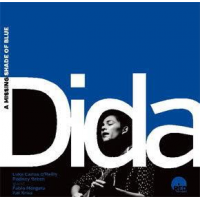 Album A Missing Shade of Blue by Dida Pelled