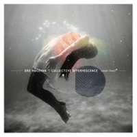 Album Collective Effervescence by Dre Hocevar