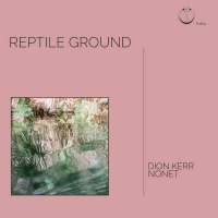 Album Reptile Ground by Dion Kerr
