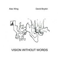 Album Vision Without Words
