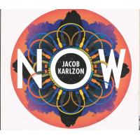 Album Now by Jacob Karlzon