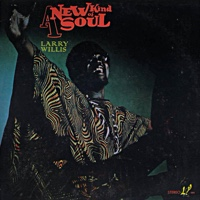 A New Kind Of Soul by Larry Willis