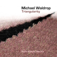 Album Triangularity by Michael Waldrop