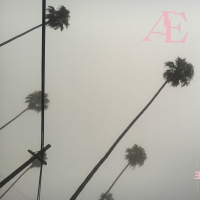 "Read ""AE"" reviewed by Roger Farbey"