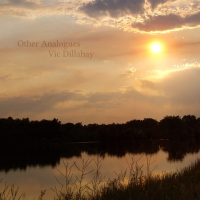 Album Other Analogues by Vic Dillahay