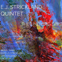The Undying Spirit by E.J. Strickland