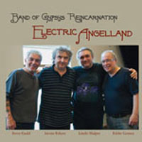 "Read ""Electric Angelland"" reviewed by Everett R. Davis"