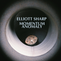 Momentum Anomaly by Elliott Sharp