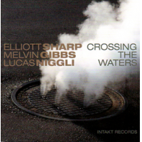 "Read ""Crossing The Waters"" reviewed by Glenn Astarita"
