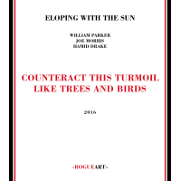 Eloping With The Sun: Counteract This Turmoil Like Trees And Birds