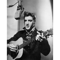"Read ""Reliving Elvis"" reviewed by Skip Heller"