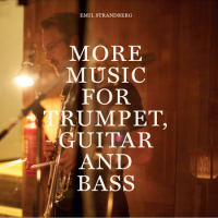 "Read ""More music for trumpet, guitar and bass"" reviewed by Eyal Hareuveni"