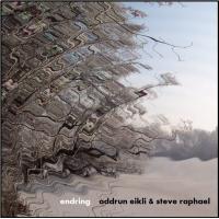 Album Endring by Steve Raphael