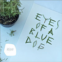Album Rise by Eyes of a Blue Dog