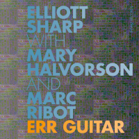 Album Err Guitar by Elliott Sharp