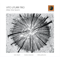 Album After the Storm by Vito Liturri