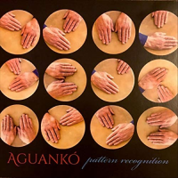 Aguanko: Pattern Recognition