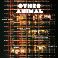 "Read ""Other Animal"" reviewed by Troy Dostert"