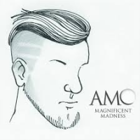 Album Magnificent Madness by Adam Meckler