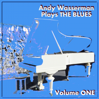Album Andy Wasserman Plays The Blues by Andy Wasserman