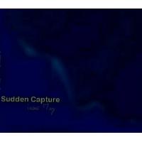 Sudden Capture: Vocals & Jazz (Music Behind Consciousness)