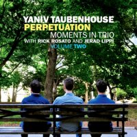 Perpetuation: Moments In Trio Volume Two