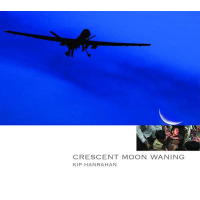 "Read ""Crescent Moon Waning"" reviewed by Vic Albani"