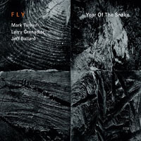 Album Fly: Year of the Snake by FLY