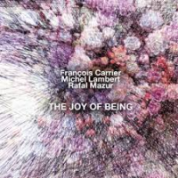 "Read ""The Joy of Being"" reviewed by Budd Kopman"
