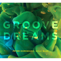 Album Groove Dreams by Peter Dominguez