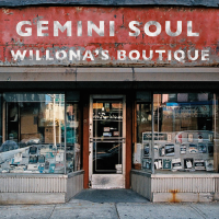 Album Willona's Boutique by Gemini Soul