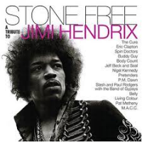 "Read ""Stone Free: A Tribute to Jimi Hendrix"" reviewed by Nenad Georgievski"