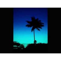 Album Big Island by Frank Barton