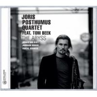 Album The Abyss by Joris Posthumus