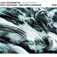 Jack DeJohnette/Ravi Coltrane/Matthew Garrison: In Movement