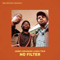 James Brandon Lewis Trio: No Filter