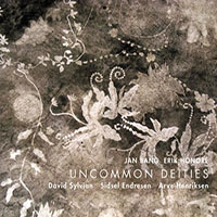 "Read ""Jan Bang / Erik Honore: Uncommon Deities"" reviewed by"