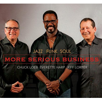 "Read ""More Serious Business"" reviewed by Jeff Winbush"