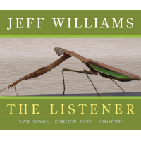 Album The Listener by Jeff Williams