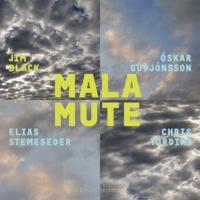 Album Malamute by Jim Black