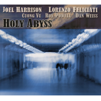 Album Holy Abyss by Joel Harrison